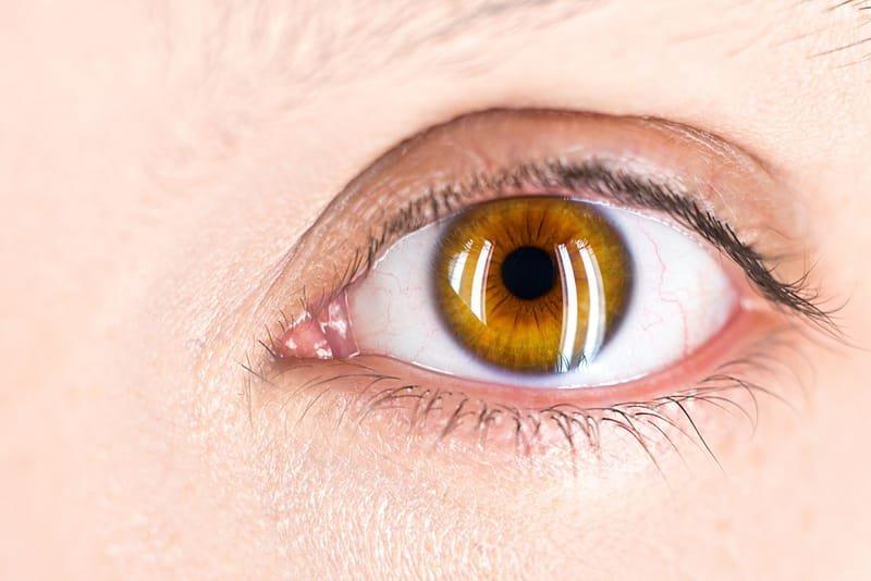 Problemas del ojo (resequedad, glaucoma, etc.)
