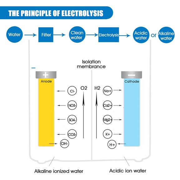 Water Electrolysis