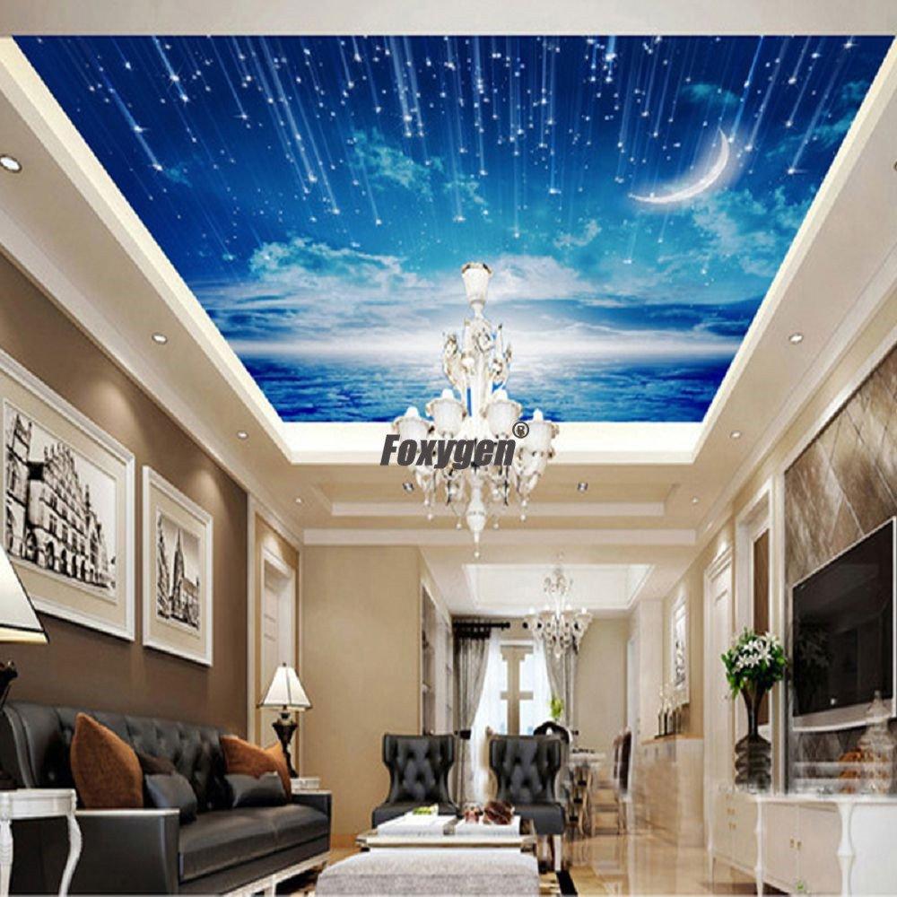 starry stretch ceiling film