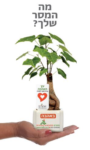 מסרים ממותגים בעציצים למתנות ולאירועים
