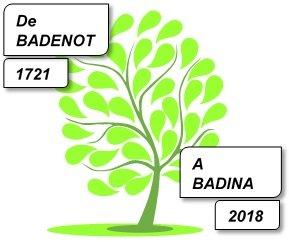 Amicale des cousins BADINA et Alliers