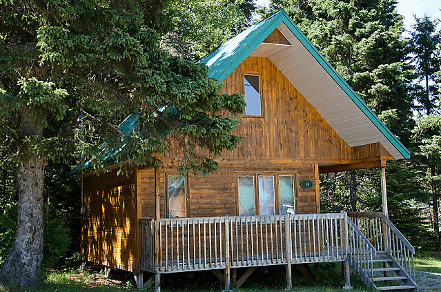 Searching for the Perfect Cabin Rental