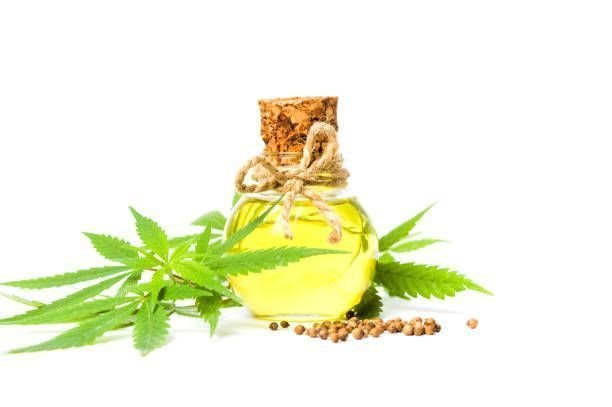 Why Should You Take Cannabis Oil?