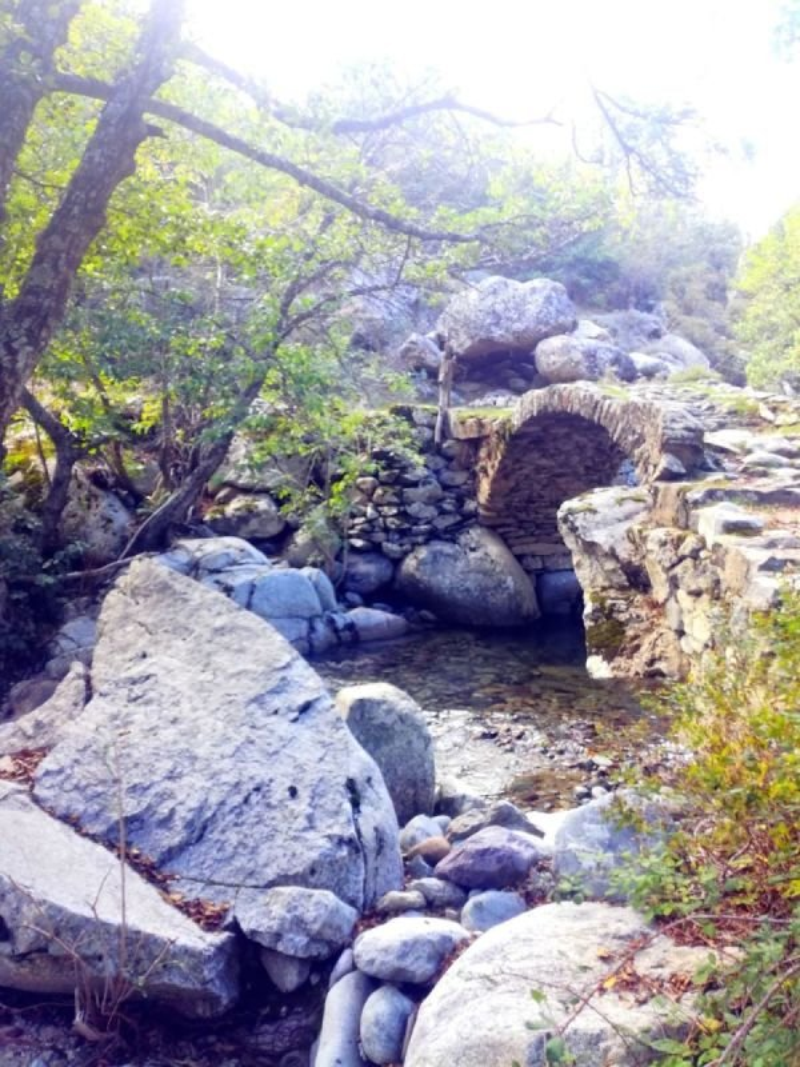 Rivière de l'Ercu