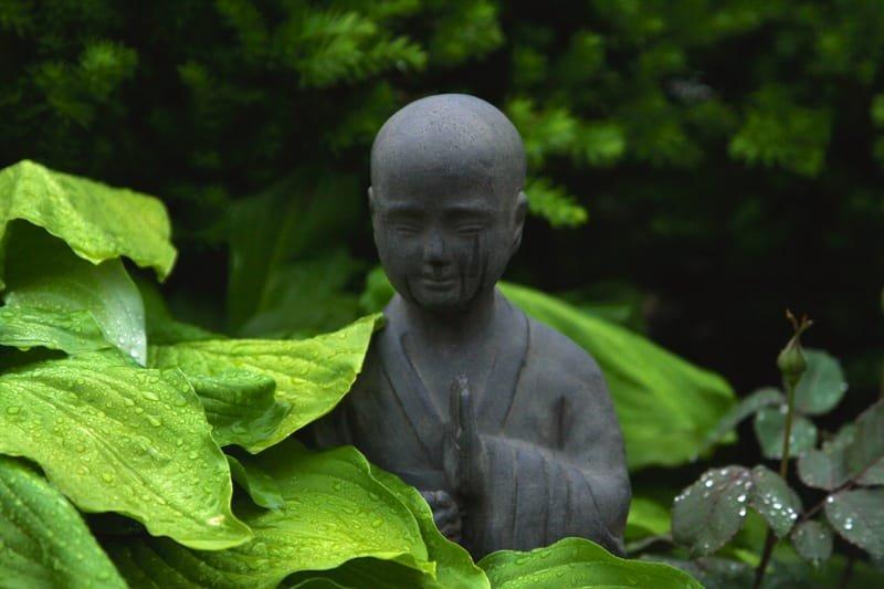 Ori Clinic - הקליניקה לרפואה סינית מסורתית, שיאצו והכוונה רוחנית