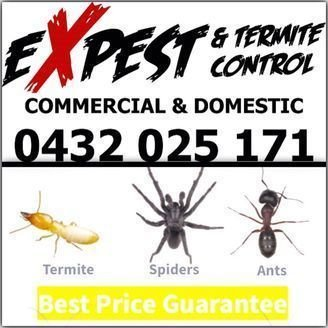 Domestic Pest Control Melbourne Ex pest and Termite Control.