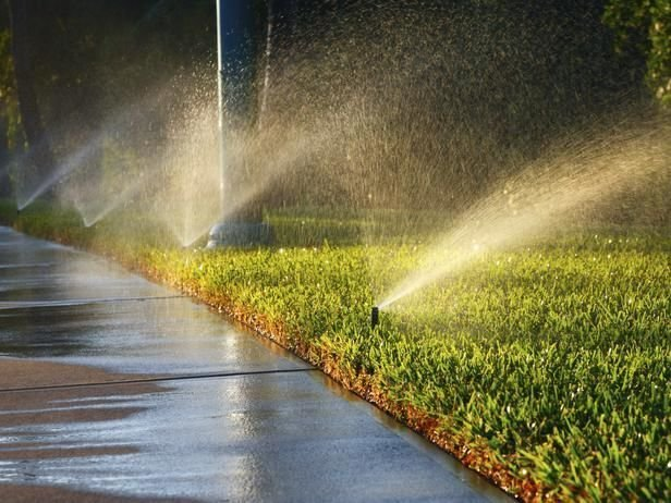 Factors To Contemplate About Lawn Care