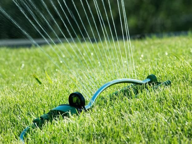 Professional Lawn Maintenance and Services