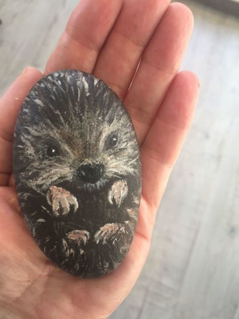 Hermione Hedgehog.