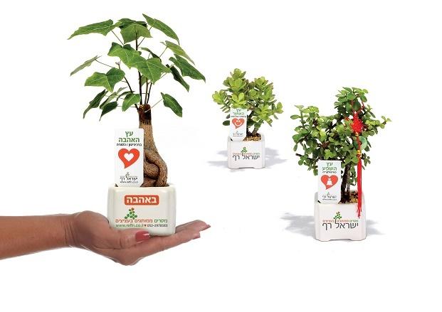 מתנות לראש השנה, עציצים ממותגים יחזקו את הקשר עם העובדים והלקוחות