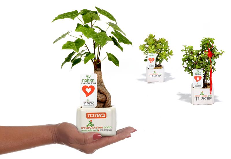 מבחר  מסרים ממותגים בעציצים למתנות ולאירועים