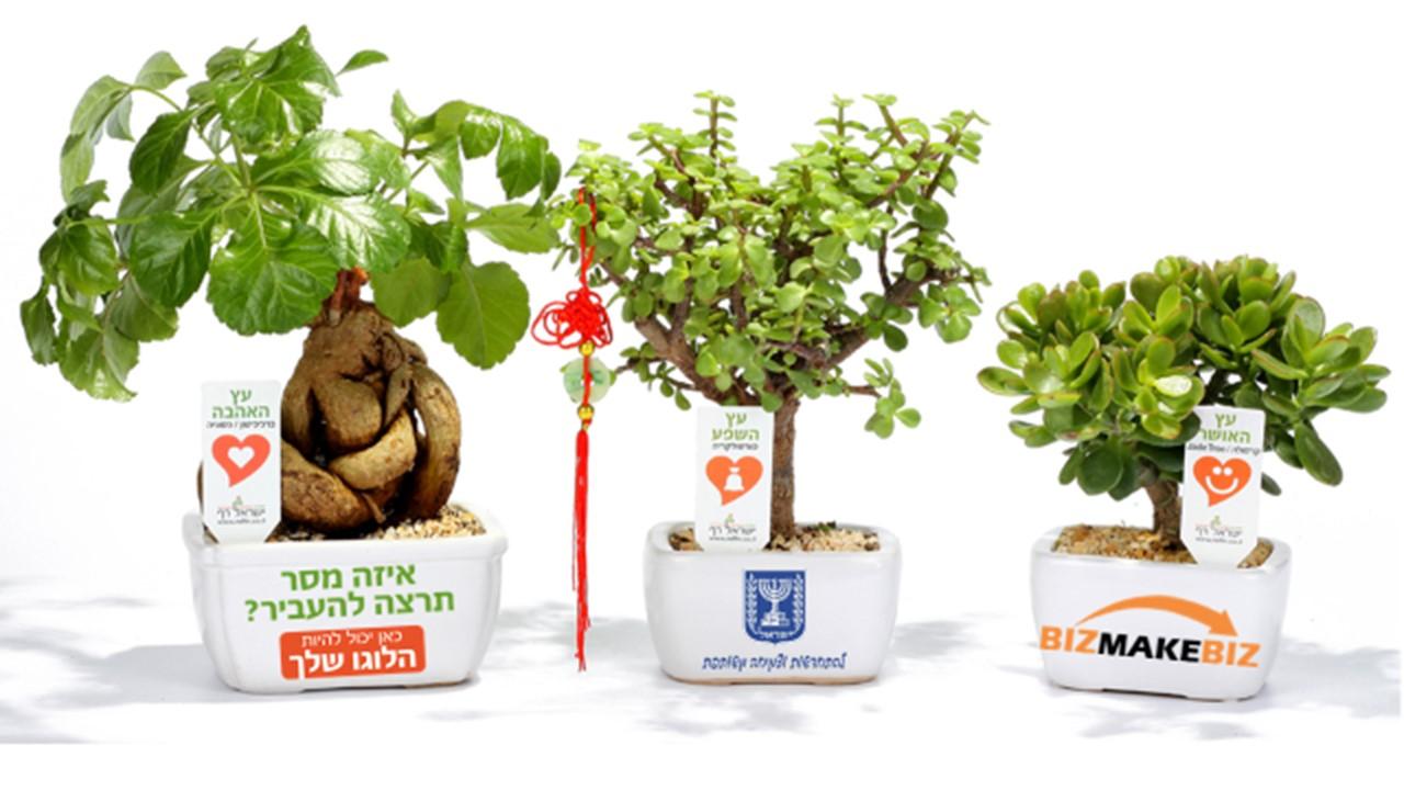 מתנות לעובדים לראש השנה, מתנות ללקוחות לראש השנה, עציצים ממותגים