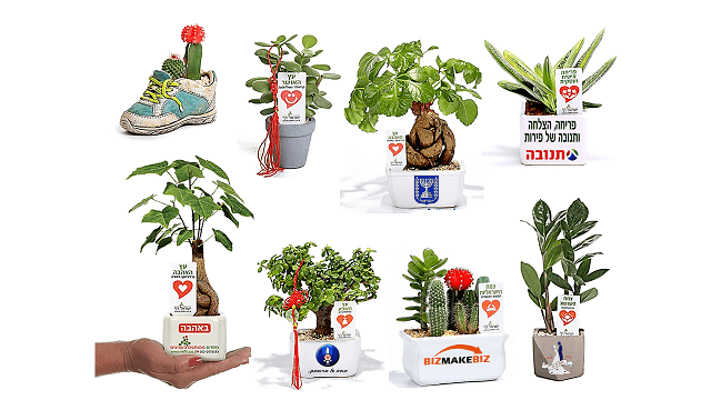 מתנות לראש השנה, עציצים ממותגים לחיזוק הקשר עם העובדים והלקוחות