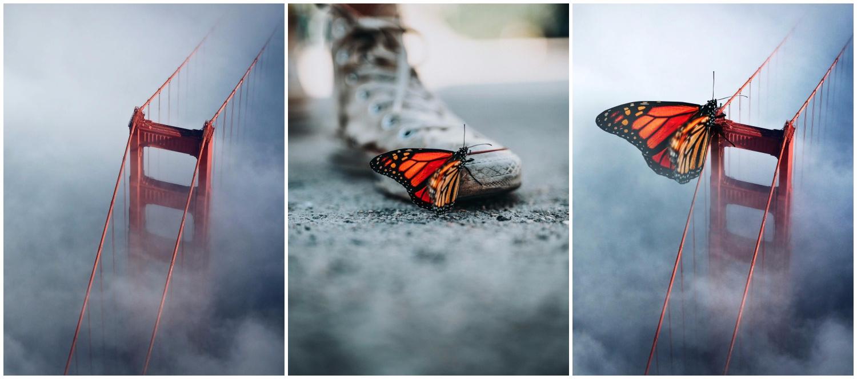 Digital art of a butterfly on a bridge.