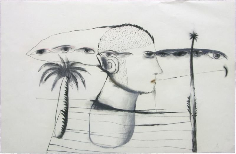 """LOOKING AROUND"" . 2012 . 25.5"" x 40"" . Charcoal, Pastel on Paper"