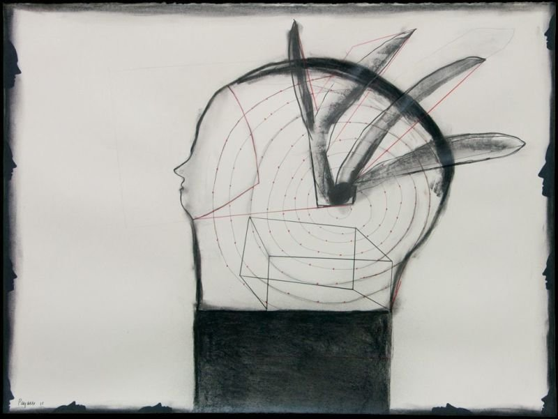"""ESPANTA PAJAROS"" . 2011 . 22"" x 30"" . Charcoal on paper"