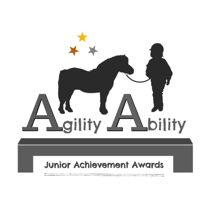 Junior Achievement Awards