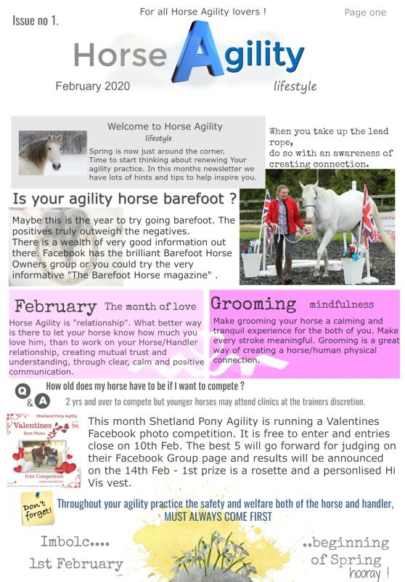 Horse Agility Lifestyle February newsletter