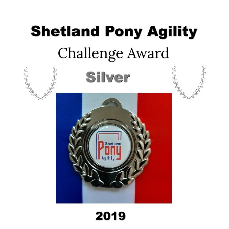 AgilityAbility Silver Level