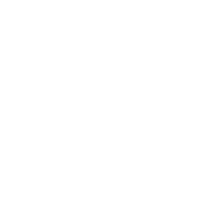 Donna Lane Photography