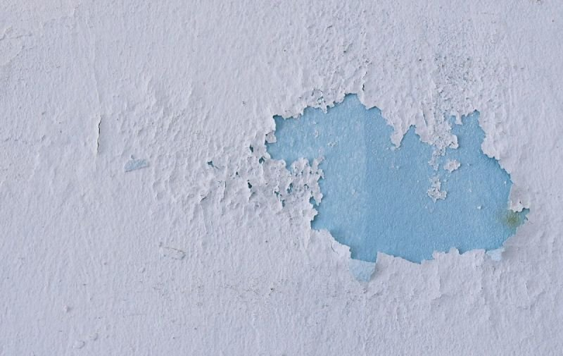 Mold remediation DC