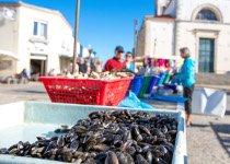 La gastonomie de la mer