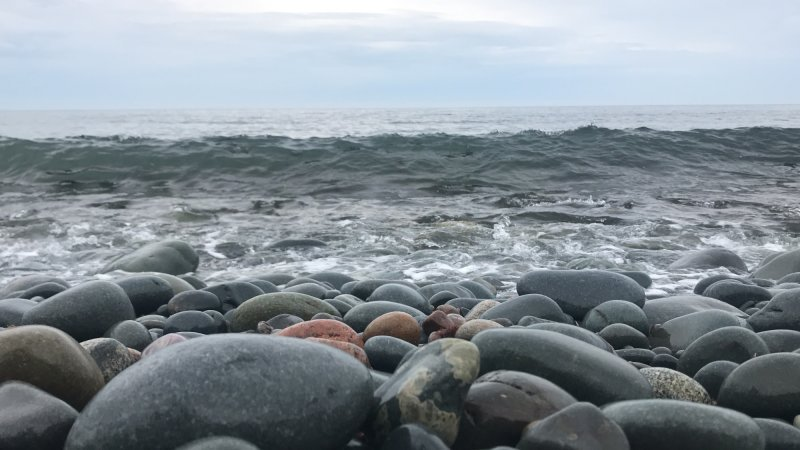 Flag Pond Coastal Access Park - Virtual Video Tour