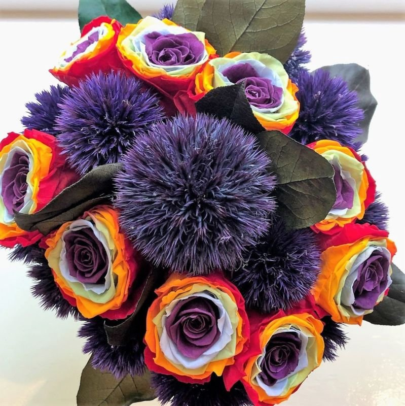 129 Rainbow roses with Giant thistle