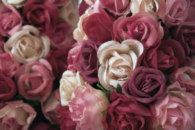 Guidelines on How to Find a Florist