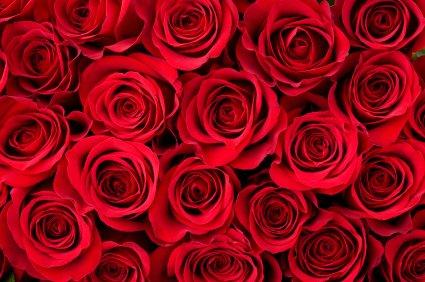 Qualities Of A Good Flower Shop