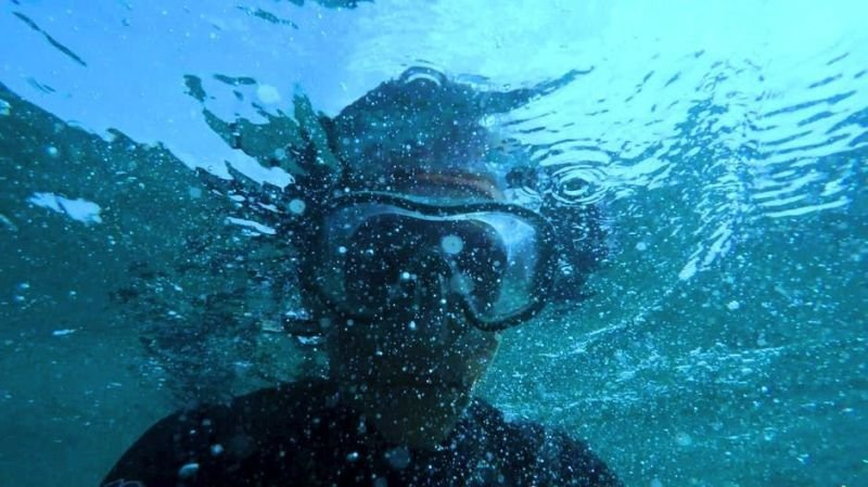Guidelines on how to Access the Right Service For Snorkeling Tours