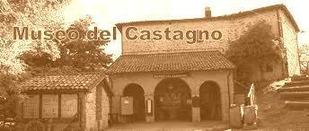 San Giacomo, il museo del castagno e il bosco delle betulle