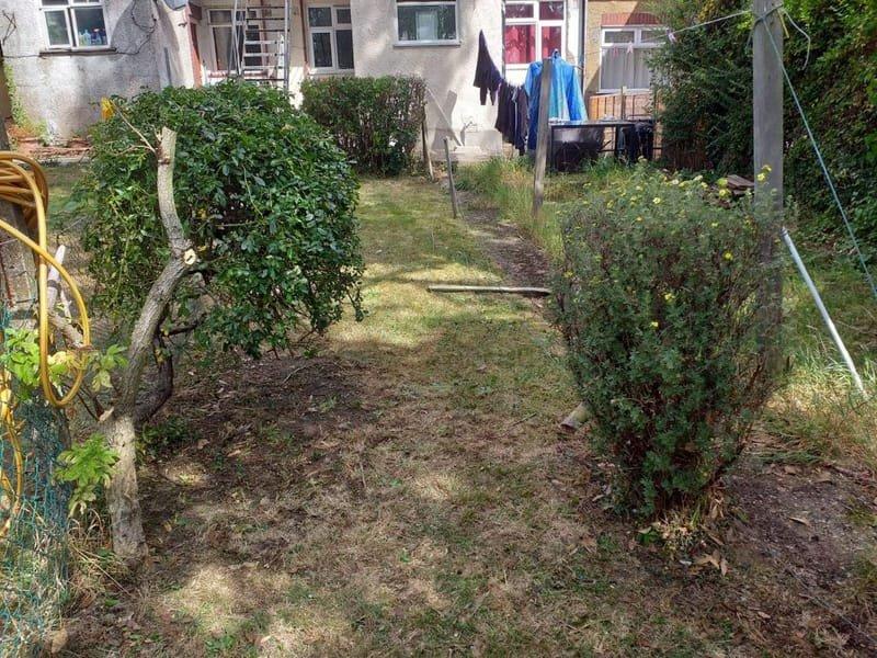 Back garden 3 (After)
