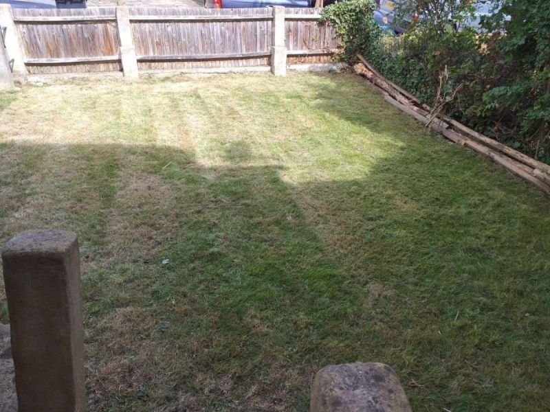 Front garden 3 (After)