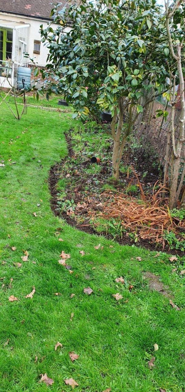 Back Garden 2 Flower bed (After)
