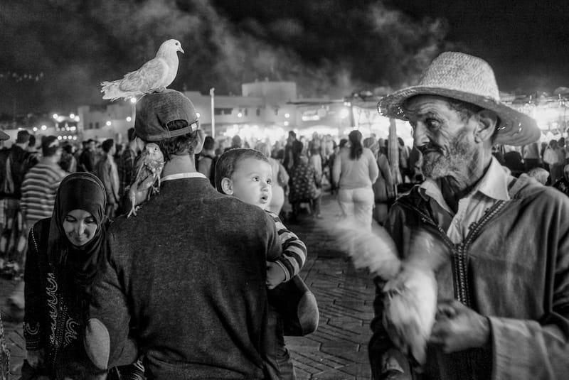 Marrakech 2016 © Yannick Doublet