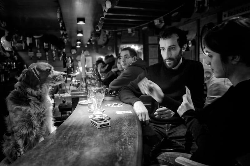 Ouessant 2014 © Yannick Doublet