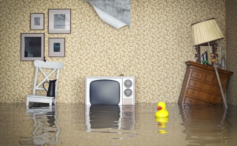 Helpful Tips for Choosing a Water Damage and Restoration Company in Tallahassee, FL