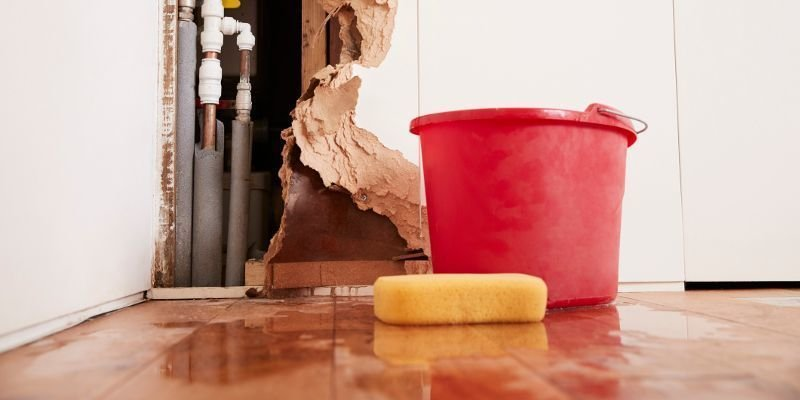 Critical Advantages of Employing a Skilled Water Damage Restoration Company