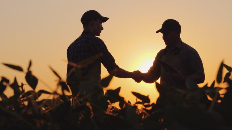 Mutual Beneficial Partnerships