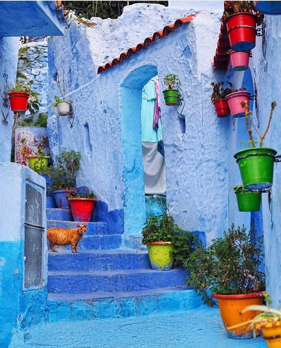 One day trip to Chefchaouen, visit chefchaouen in 1 day, 1 day trip from fes to chefchaouen, the blue city, explore chefchaouen