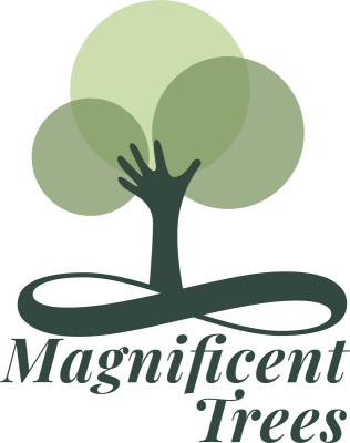 Magnificent trees