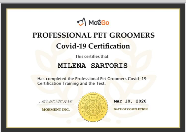 Grooming and Covid 19