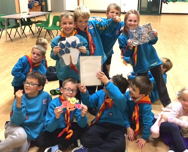 Beavers with diagrams of plaque