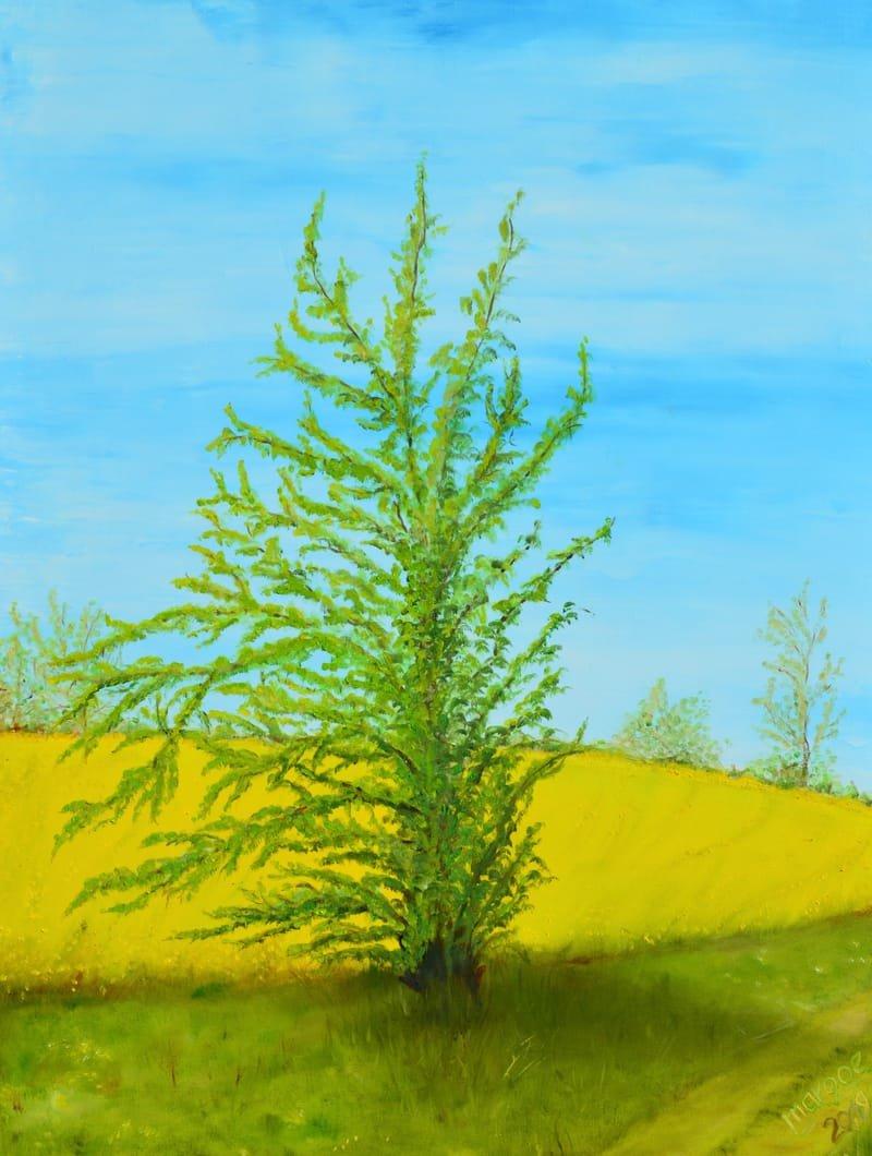 Der schiefe Baum von Marxhagen, 80 x 60 cm - Öl auf Leinwand, (2019)
