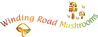 Winding Road Mushrooms