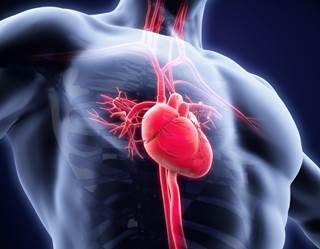علاج القلب بالخلايا الجذعية