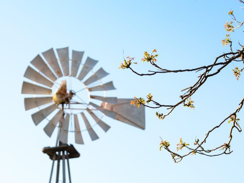 Windmills & Water