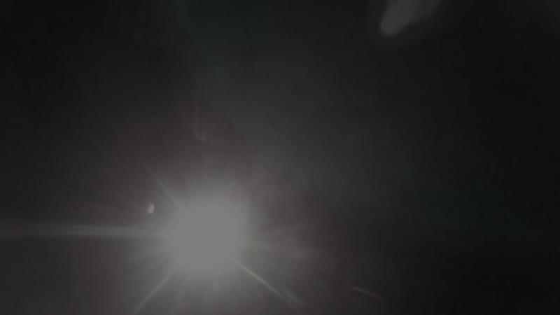 F.o.S - Harem Silks (teaser)