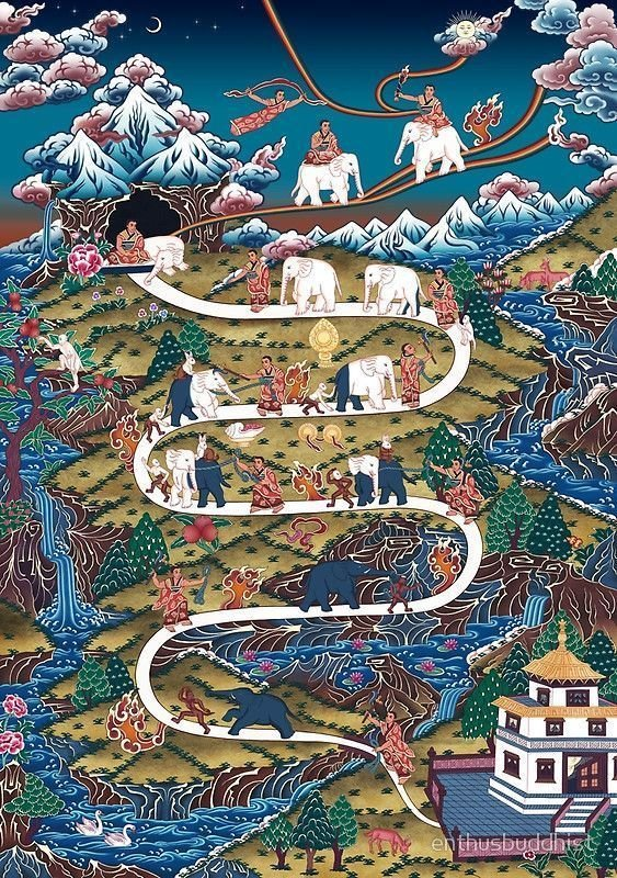 The Elephant Path